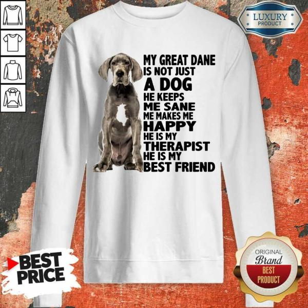 My Great Dane Is Not Just A Dog He Keeps Me Sane Me Makes Me Happy He Is My Therapist He Is My Best Friend Sweatshirt