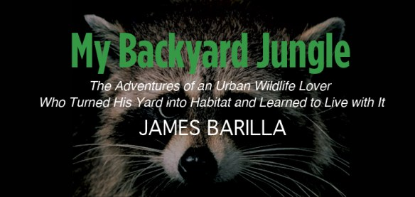 BARILLA-BackyardJungle