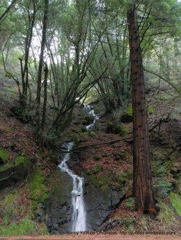 mini waterfall on Panoramic