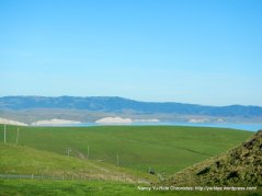 open grasslands & headlands