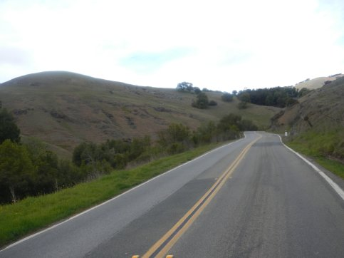 gentle climb up Lucas Valley
