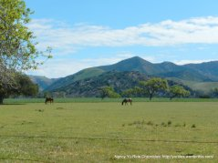 San Rafeal Mountains