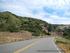on Berryessa Knoxville Rd