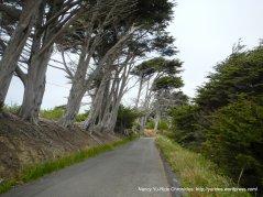 begin climb up Irish Hill-Coleman Valley