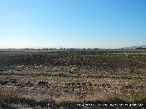 rich farmland