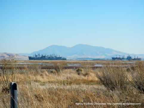 Mothball Fleet with Diablo Views