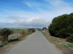 SF Bay Trail-Pt Isabel Dog Park