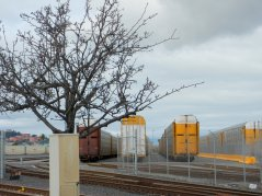 colorful boxcars