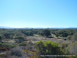 Fort Ord National Monument area
