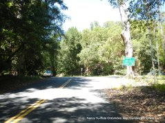 descend Pinehurst at Canyon Rd