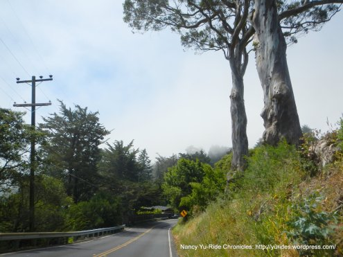 Sequoia Valley Rd