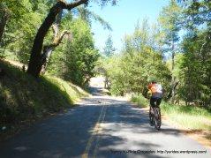 exit woods-Fairfax Bolinas Rd