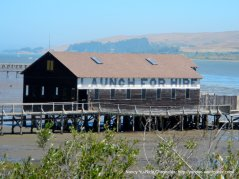 Tomales Bay-Launch