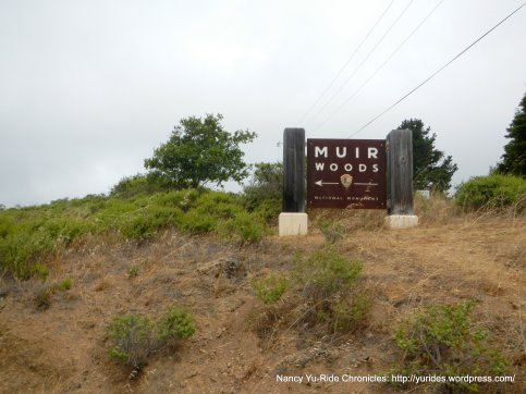 to Muir Woods