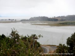 view of Bolinas Lagoon