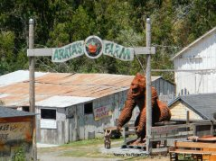 arata's farm