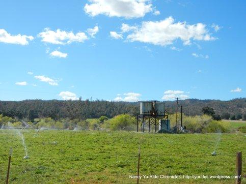 cholame rd ranch