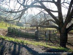 hillside ranch