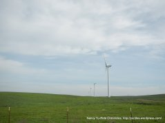 turbine farms