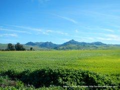 hollister valley-santa ana mpuntain