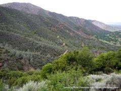 falls trail views