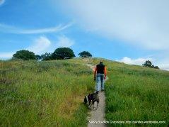 path to ridge