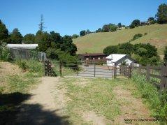 crockett ranch staging area