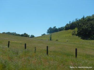dutcher creek rd hills