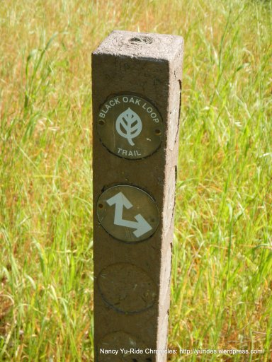 stay on black oak loop trail