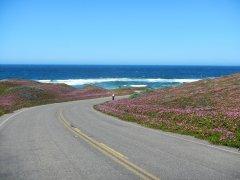 to north beach