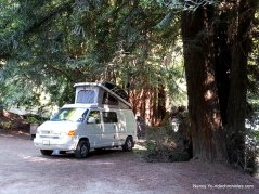 reef campground