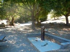 Shady picnic area