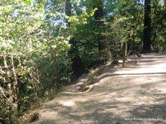 to dimond canyon trail