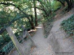 dimond canyon trail