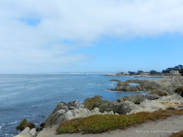 Lovers Point State Marine Reserve area