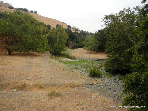 welch creek