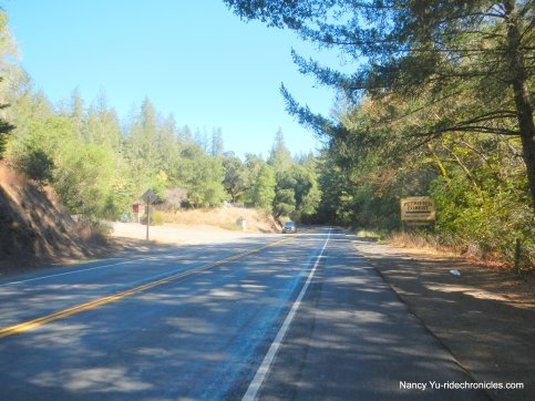 petrified forest rd