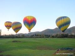 yountville hot air balloons