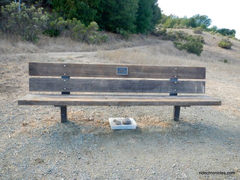 terry badal memorial bench