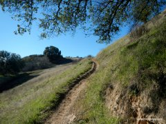 paradise valley trail