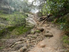 lower chaparral trail