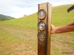 murphy meadow trailmurphy meadow trail