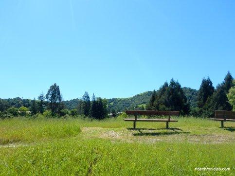 laf/moraga reg trail