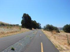 bay ridge trail