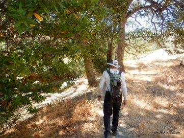 to hetherington trail