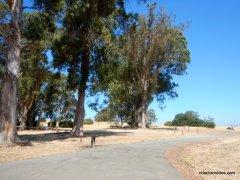 owl alley trail