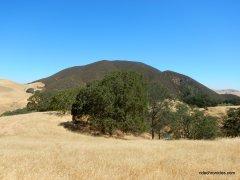 olofson ridge rd