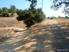 right-lafayette ridge trail