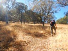 sattler trail