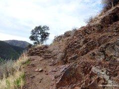falls trail